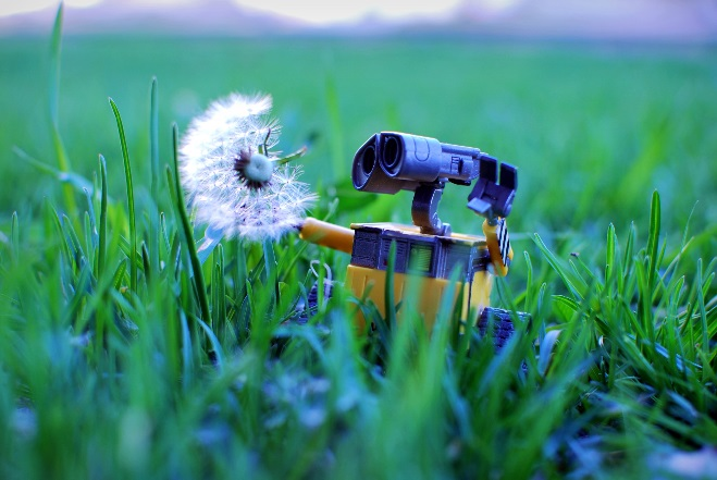 Wall-e Makes a Wish by Morgan/CCBY
