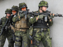 Technical Choices Made Achieving Military Strategic Goals: When Protection Looks Threatening